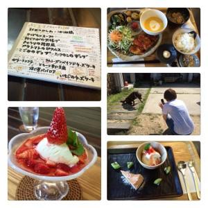 遠藤クリニック 職員 信楽 cafe